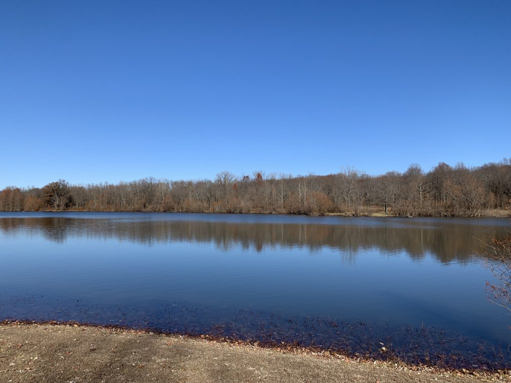 Photo of the lake at Beall Woods State Park in Illinois.